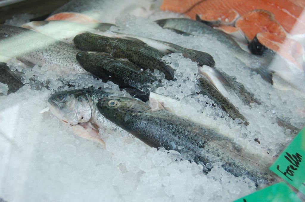 Fischmarkt d sseldorf d sseldorf blog for Am fischmarkt