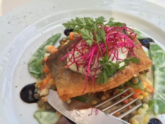 gourmetfestiva_kö_essen